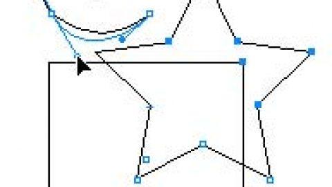 Illustrator Vectores y Mapa de bit