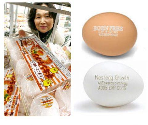 Los japoneses ponen publicidad en la cáscara de los huevos.
