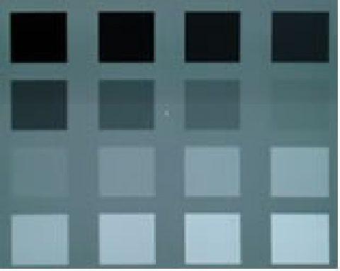 Calibración del monitor y selección de color.