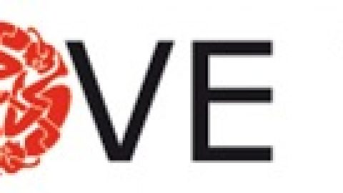WOFF el formato para la tipografía Web