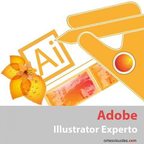 Tercer eBook de Illustrator, experto.