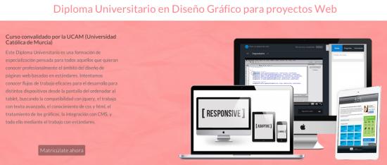Diploma Universitario en Diseño Gráfico para proyectos Web.