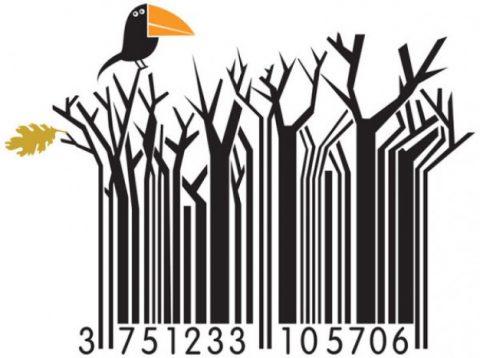 6 consejos del tamaño en códigos de barras.