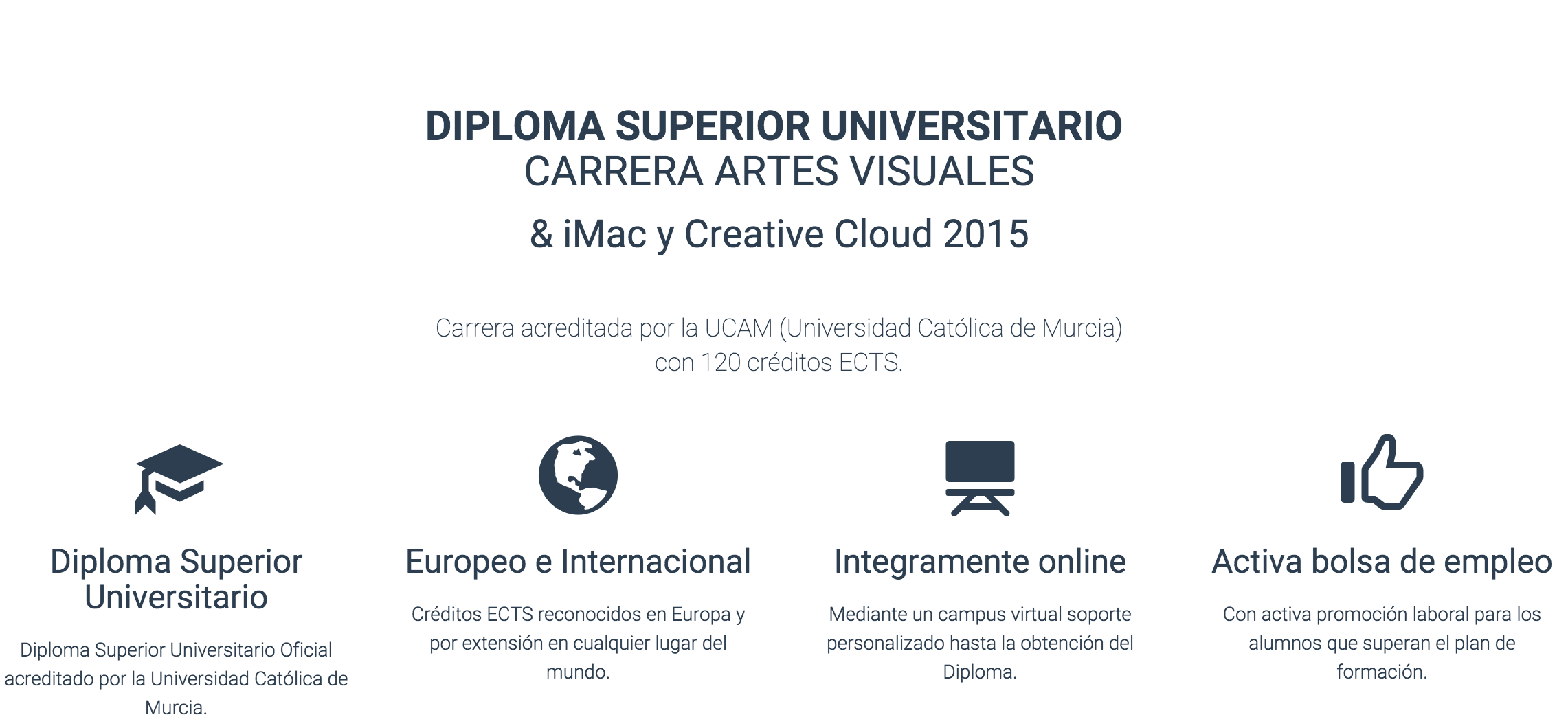 Diploma Superior Universitario. Carrera en Artes Visuales.