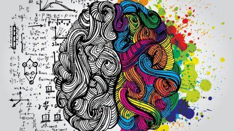 Mapas Mentales, caminos creativos