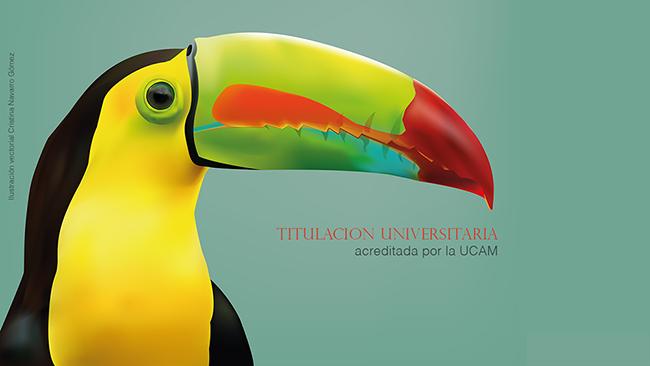 Instituto de Artes Visuales y UCAM